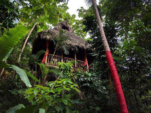 Best Tree House Village Dominican Republic