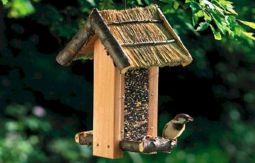 Rustic Bird Feeder Plans