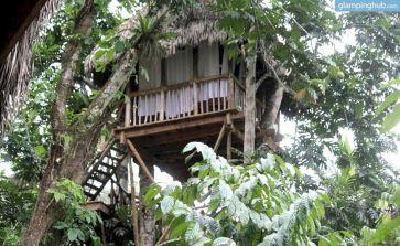 Tree House Village Dominican Republic Ideas
