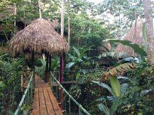 Tree House Village Resort Dominican Ideas