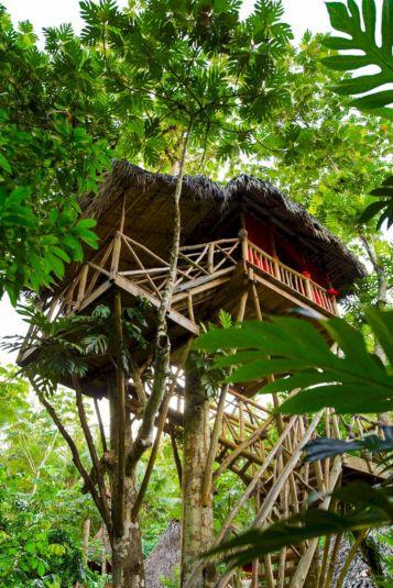 Tree House Village Resort Dominican