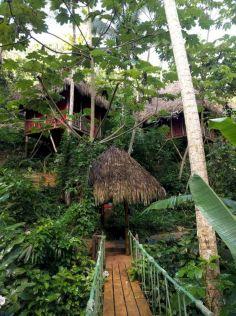 Tree Houses Village Resort Dominican