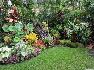 Backyard Idea Tropical Garden Design