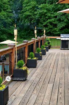 Backyard Tropical Garden Ideas