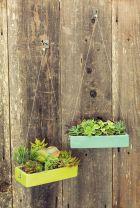 Small Succulent Container Garden Ideas 5