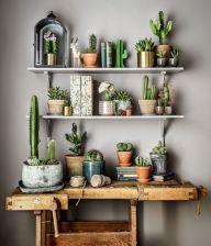 Cactus Home Decor Ideas 13