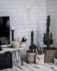 Cactus Home Decor Ideas 20
