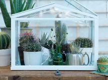 Mini Indoor Greenhouse Design