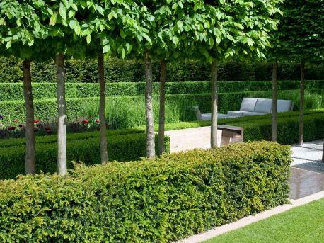 Formal Hedge Garden
