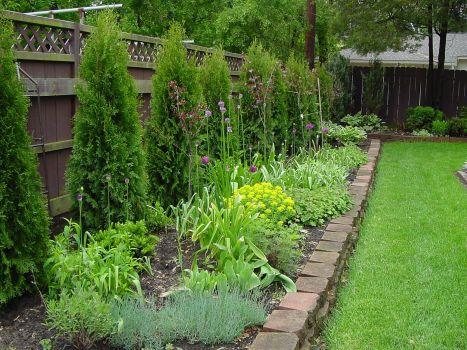 Landscaping Along Fence Line