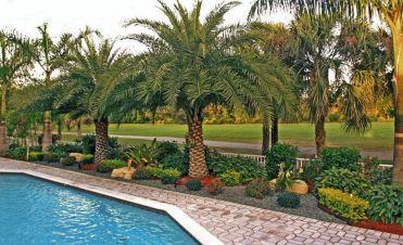 South Florida Landscape Pool Landscaping Ideas