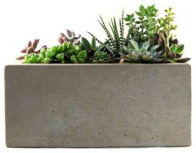 Rectangular Indoor Planter Pots