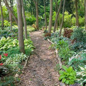 Shade Garden Path Ideas