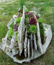 Succulent Garden Planter Idea