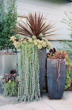 Tall Succulent Planter Ideas