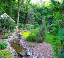 Woodland Landscaping Ideas Back Yard