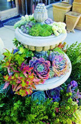 Garden Succulent Ideas 28