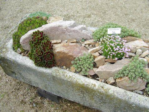 Gorgeous Rock Garden Ideas 16