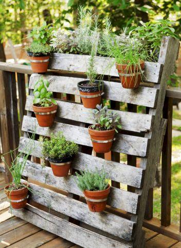 Container Gardening Ideas 16