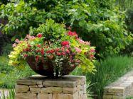 Container Gardening Ideas 29