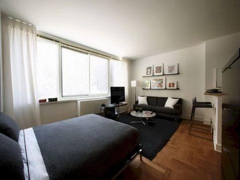 Studio Apartment Decorating Ideas 14