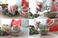 DIY Succulent Terrarium Ideas 13