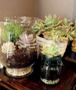 DIY Succulent Terrarium Ideas 14