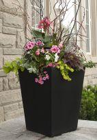 Summer Planter Ideas 17