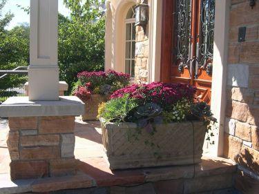 Summer Planter Ideas 18