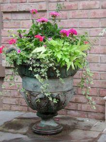 Summer Planter Ideas 25