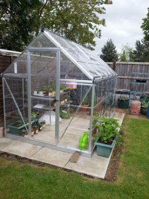 Small Greenhouse Ideas 271