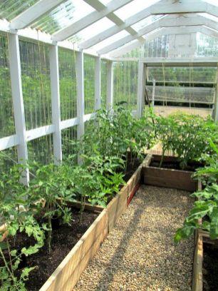 Small Greenhouse Ideas 281