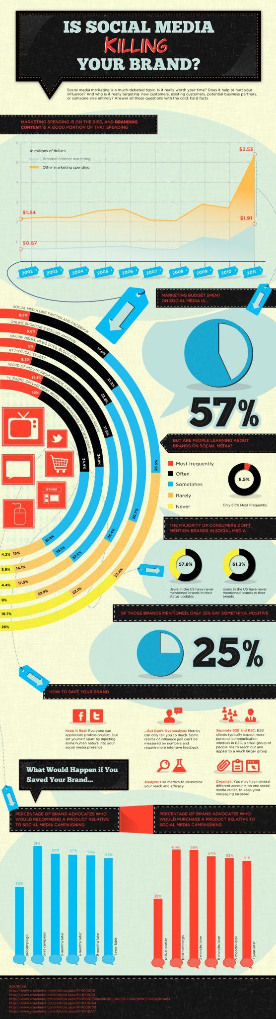 Social Media Advertising Awareness Infographic
