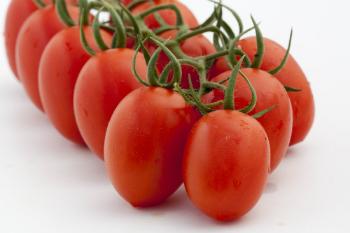 Whitney tomato