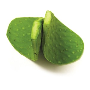 CACTUS-LEAF-FRESH-PRODUCE-GROUP-LLC.jpg