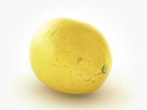 LEMON-FRESH-PRODUCE-GROUP-LLC.jpg