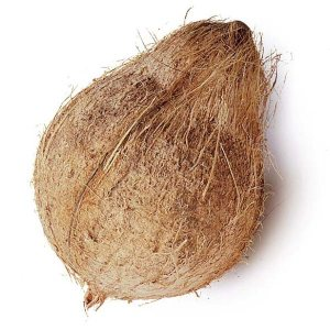 COCONUT-SEMIHUSKED-FRESH-PRODUCE-GROUP-LLC.jpg