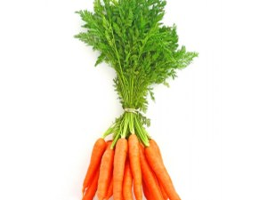 CARROT-GREENS-FRESH-PRODUCE-GROUP-LLC1.jpg