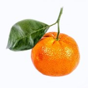CLEMENTINE-TANGERINE-FRESH-PRODUCE-GROUP-LLC.jpg
