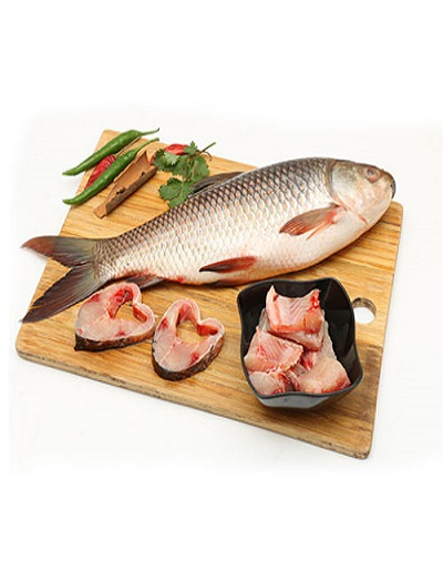 Katla-Fish