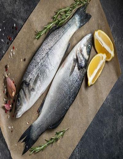 khadashi fish online
