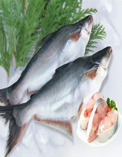 Silan (सिलन)/ basa fish_buy fresh fish online in satara - Fresh Protino