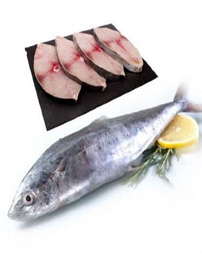 headless surmai fish | fresh protino