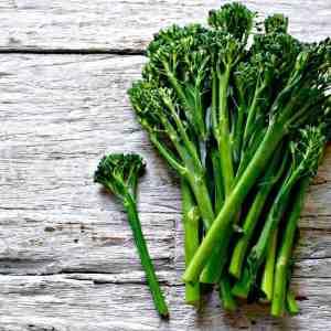 Tender Stem Broccoli 230g