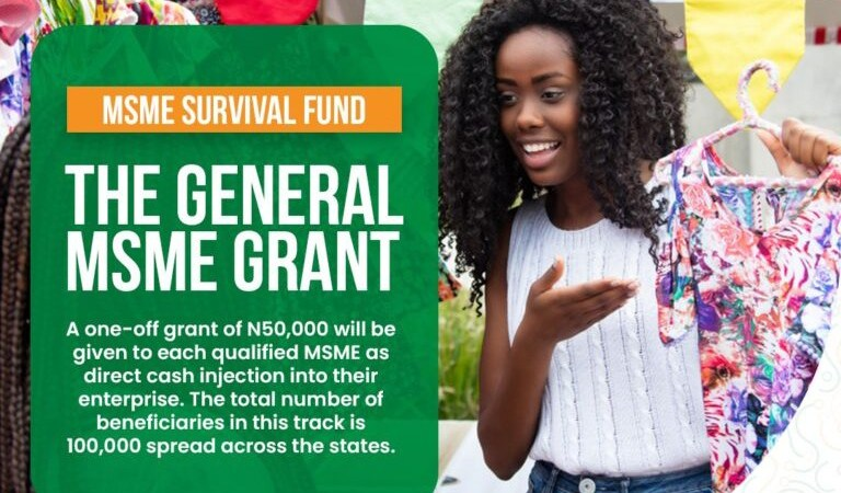 Survival Fund MSME Grant Portal Officially Open For Application