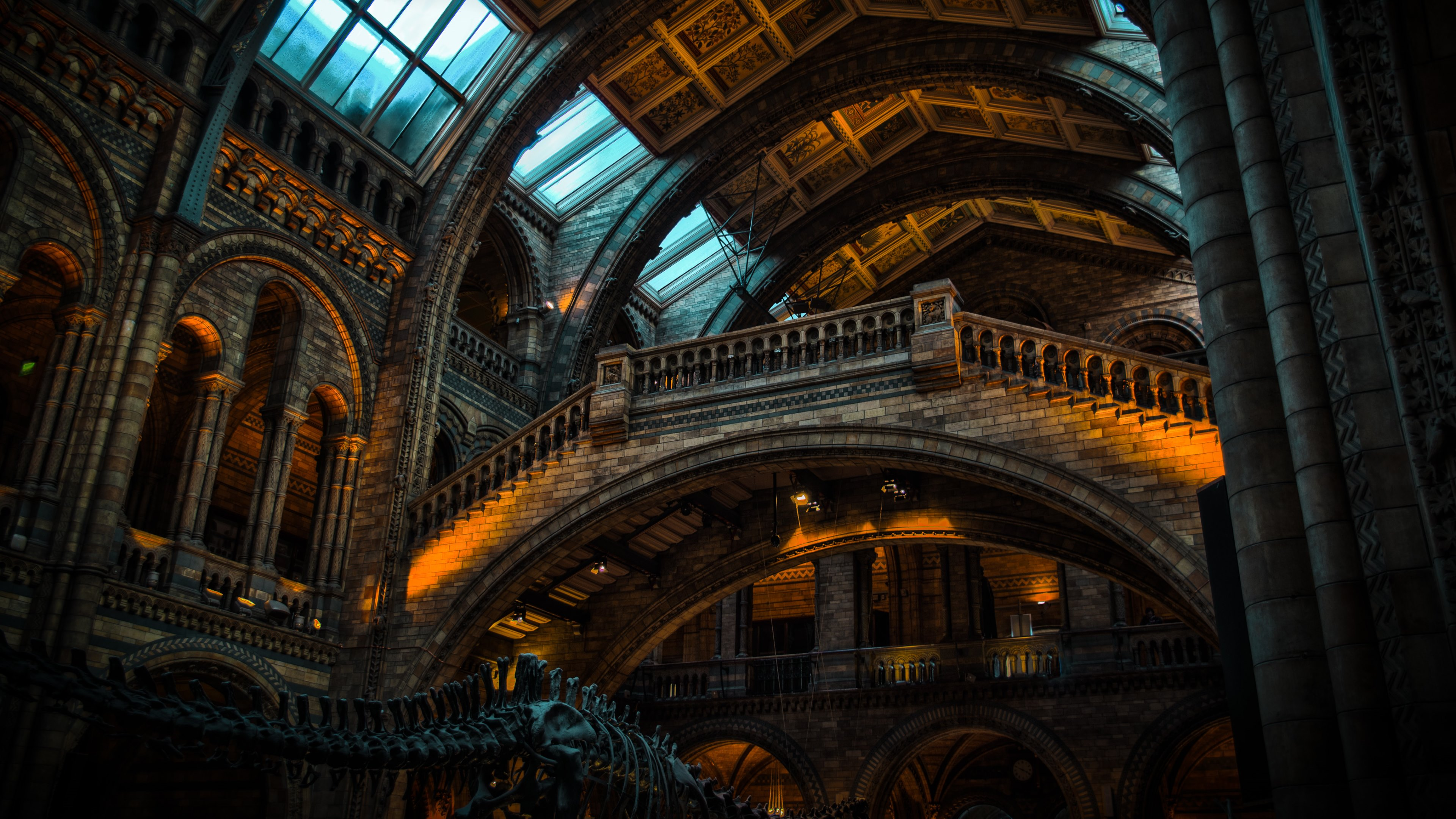 Natural History Museum Wallpapers