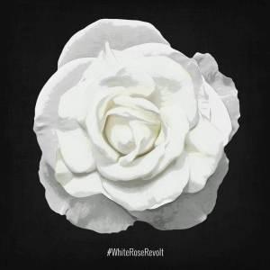 facebook.com/whiterosefresno