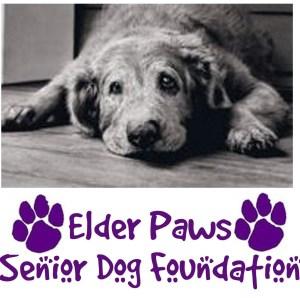Elder Paws Senior Dog Foundation to host 'Hearts of Gold' fundraiser