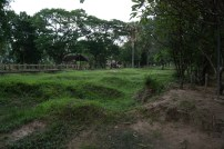 Grounds of the Killing fields. The holes were sites of mass graves
