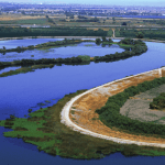 California Department of Water Resources Levees guard one of the Delta's many twisting, turning channels. The Bay-Delta Conservation Plan, addressing  the region's problems, is to be released in draft form next month.
